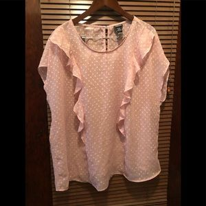 Dainty Plus Size Pink Blouse